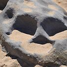 Rock Skull by TheaShutterbug
