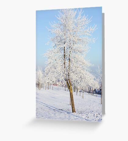The whitest tree Greeting Card