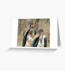Pretty ugly birds! Greeting Card