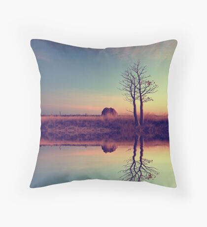 Voyage of discovery Throw Pillow