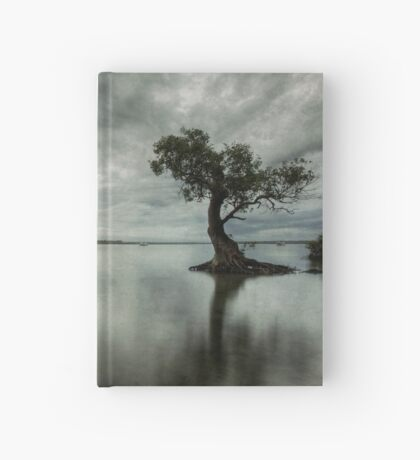 Blue Eve #2 Hardcover Journal