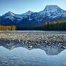 Sunwapta River in the Canadian Rockies by Dawne Olson