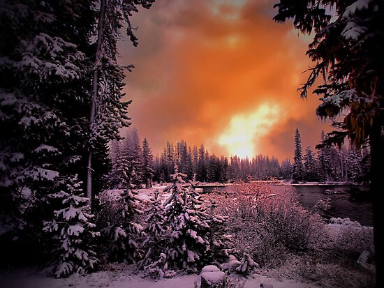 In His Love by Charles & Patricia   Harkins ~ Picture Oregon