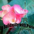 In Solidarity with Paris by lensbaby