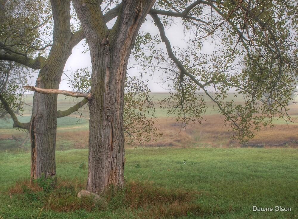 Giants on the Prairie by Dawne Olson