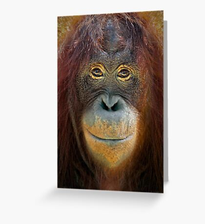 You Looking At Me Greeting Card