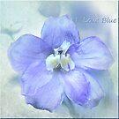 I Love Blue by Brenda Boisvert