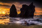 Seal Point Sunset by Paul Mercer