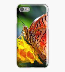 Butterfly Fresco  iPhone Case/Skin