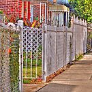 The fences by henuly1