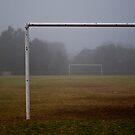 empty goals by paul erwin