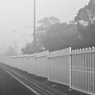 where the white fence becomes a white wall by paul erwin