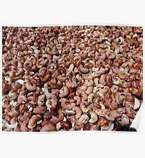Cashew Nut Cashew Roast Plant Nut Poster