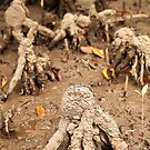 Creatures of The Mud by -aimslo-