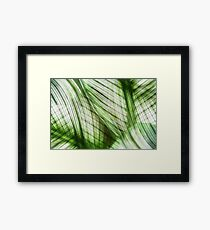 Nature Leaves Abstract in Green Framed Print