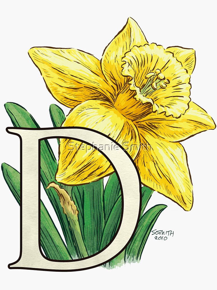 D is for Daffodil Flower Monogram Floating by stephsmith