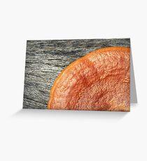 Orange Fungi Stuff Greeting Card