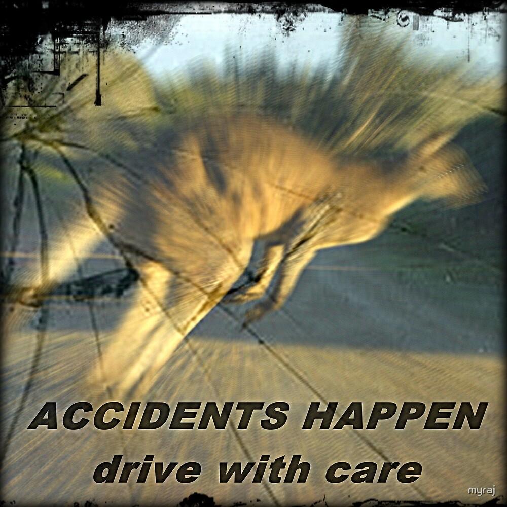 ACCIDENTS HAPPEN by myraj