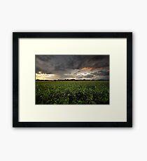 Storm Greens Framed Print