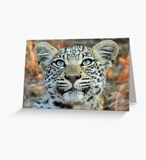 Something good up there! Greeting Card