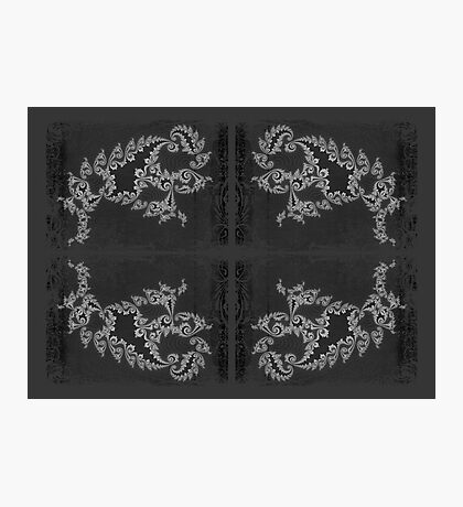 Licorice and Lace Photographic Print