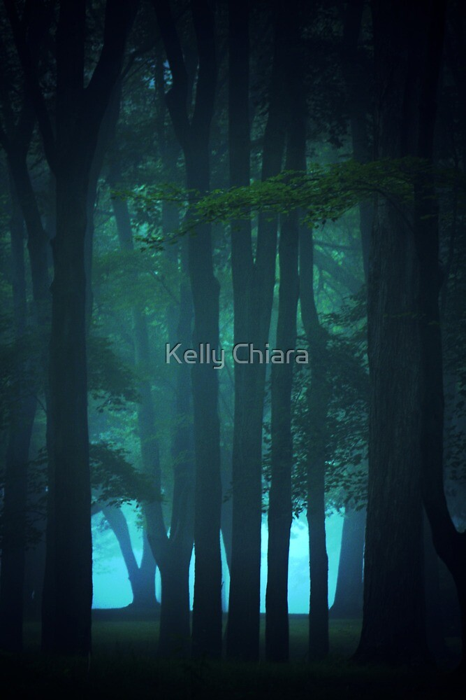 Sometimes it's Better not to See Everything by Kelly Chiara