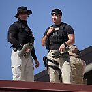 Secret Service Roof Security by SB  Sullivan