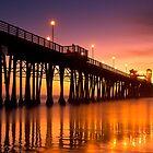 Ocean Sunset by camfischer