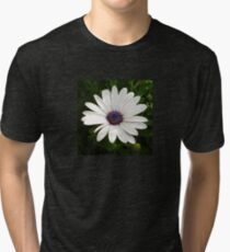Beautiful Osteospermum White Daisy With Purple Center  Tri-blend T-Shirt