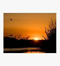 Sunrise at Brazos Bend Photographic Print
