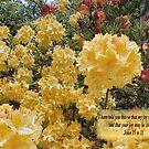 GOLDEN JOY    BIBLE TEXT/BESPOKE TEXT by Shoshonan