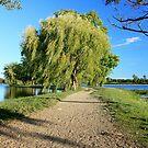 A Walk through North Bay by Melody Ricketts
