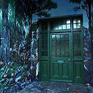 Forest fantasy by Karen01