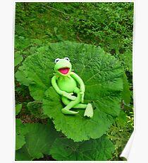 Butterbur Journal Large Nature Frog Kermit Poster