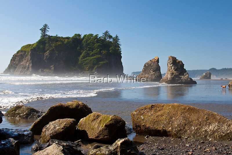 Quot Ruby Beach Olympic National Park Washington Coast Quot By