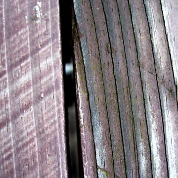Wood Grain by maxharrisart
