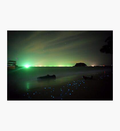 Bio-luminescent Plankton  Photographic Print