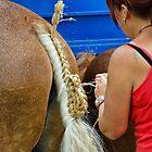 The Art Of Plaiting ~ Buckham Fair by Susie Peek