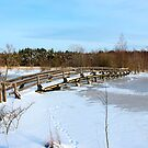 The Herrestadsjön bridge II by João Figueiredo