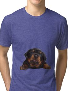 Cute Rottweiler With Tongue Out Isolated Tri-blend T-Shirt