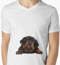 Cute Rottweiler With Tongue Out Isolated Men's V-Neck T-Shirt