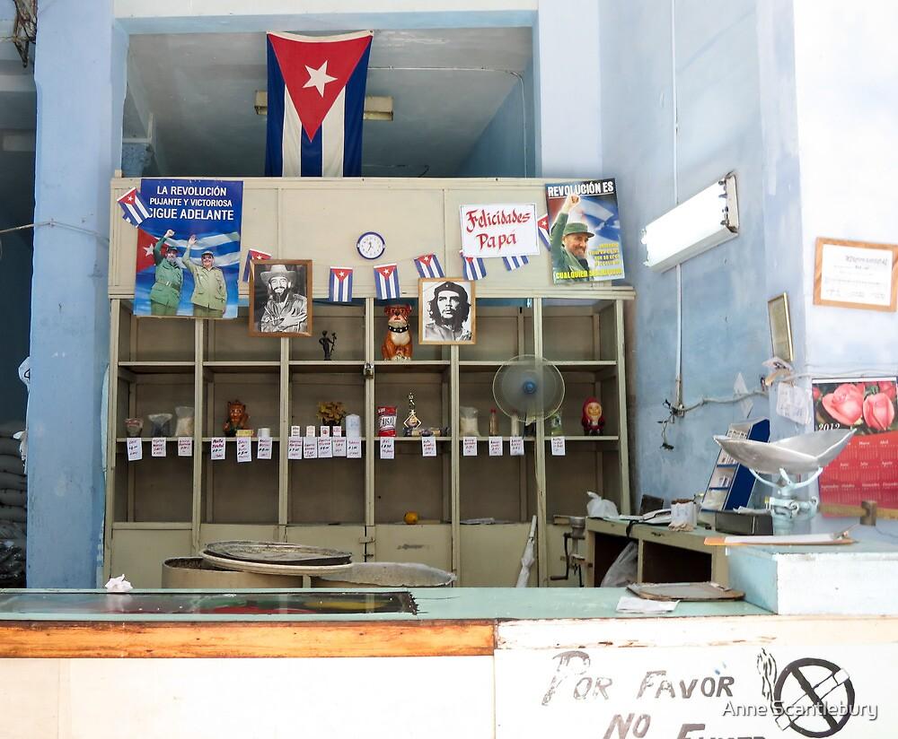 A shop. by Anne Scantlebury