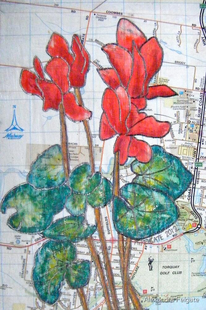 Red Cyclamen on the Street by Alexandra Felgate