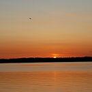 Sunset, Lopez Island, WA by Deborah Singer