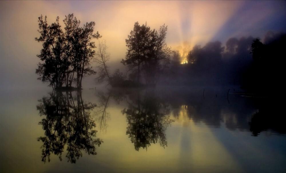Foggy Sunrise by kcy011