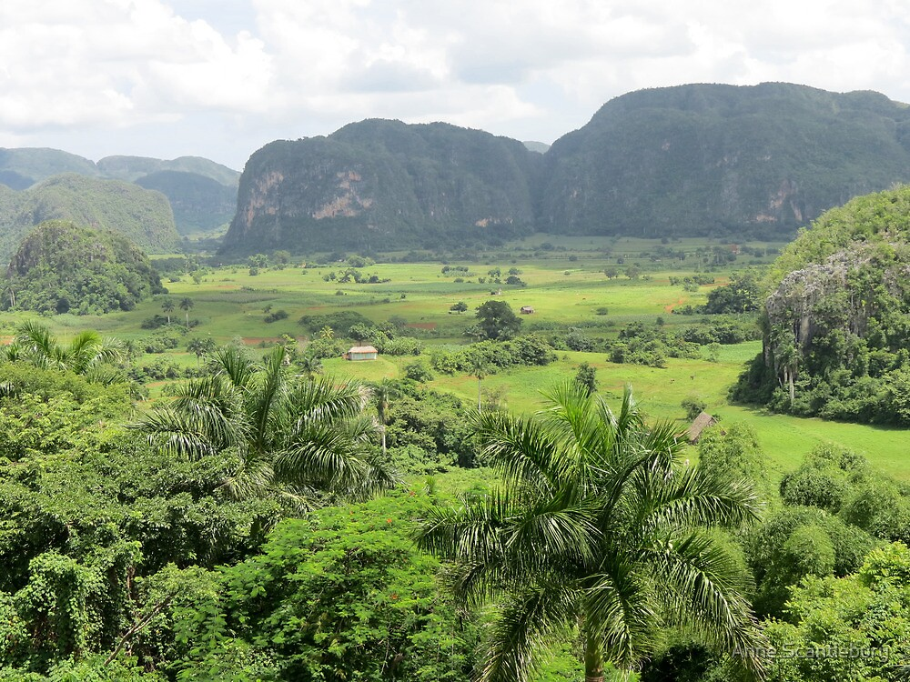 Vinales valley landscape. by Anne Scantlebury