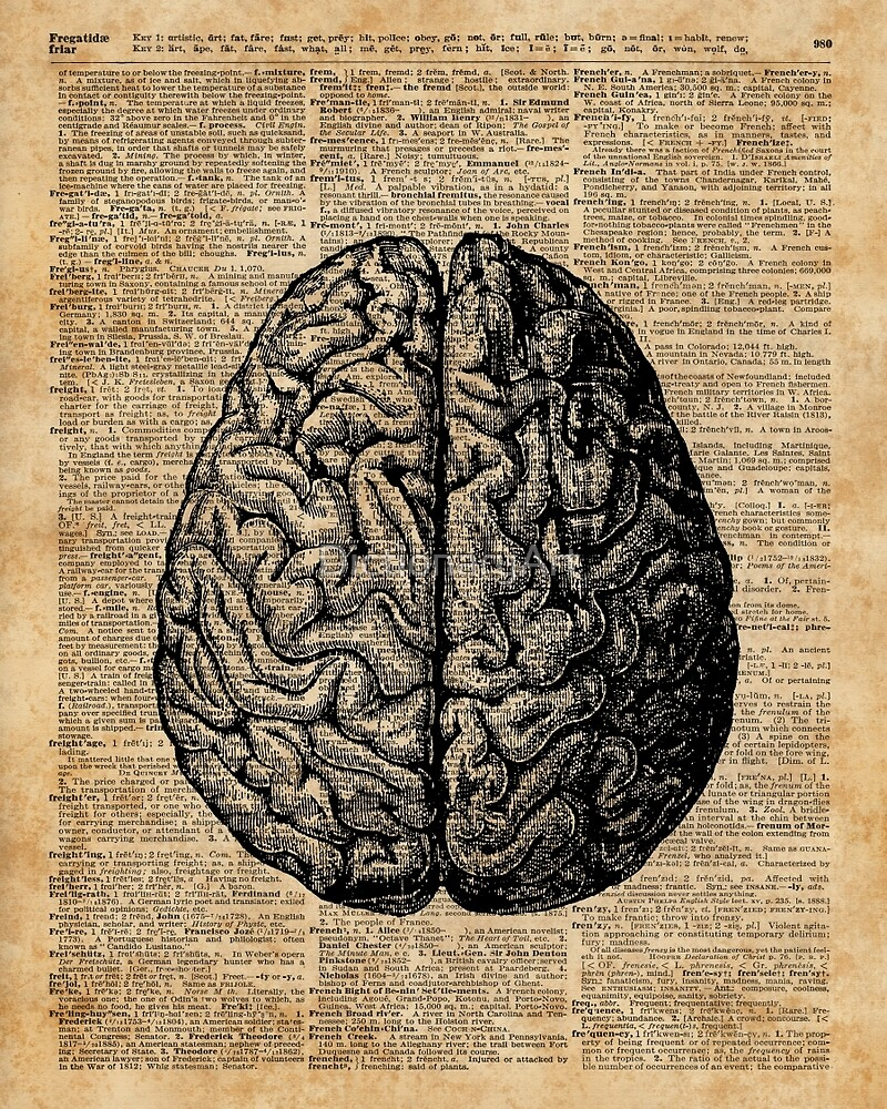 the effects of art on the brain Learn what this means and how the science of the brain affects art artists have long been thought to be right brain dominant learn what this means and how the science of the brain affects art the theory of right brain-left brain and its relevance to art search the site go.