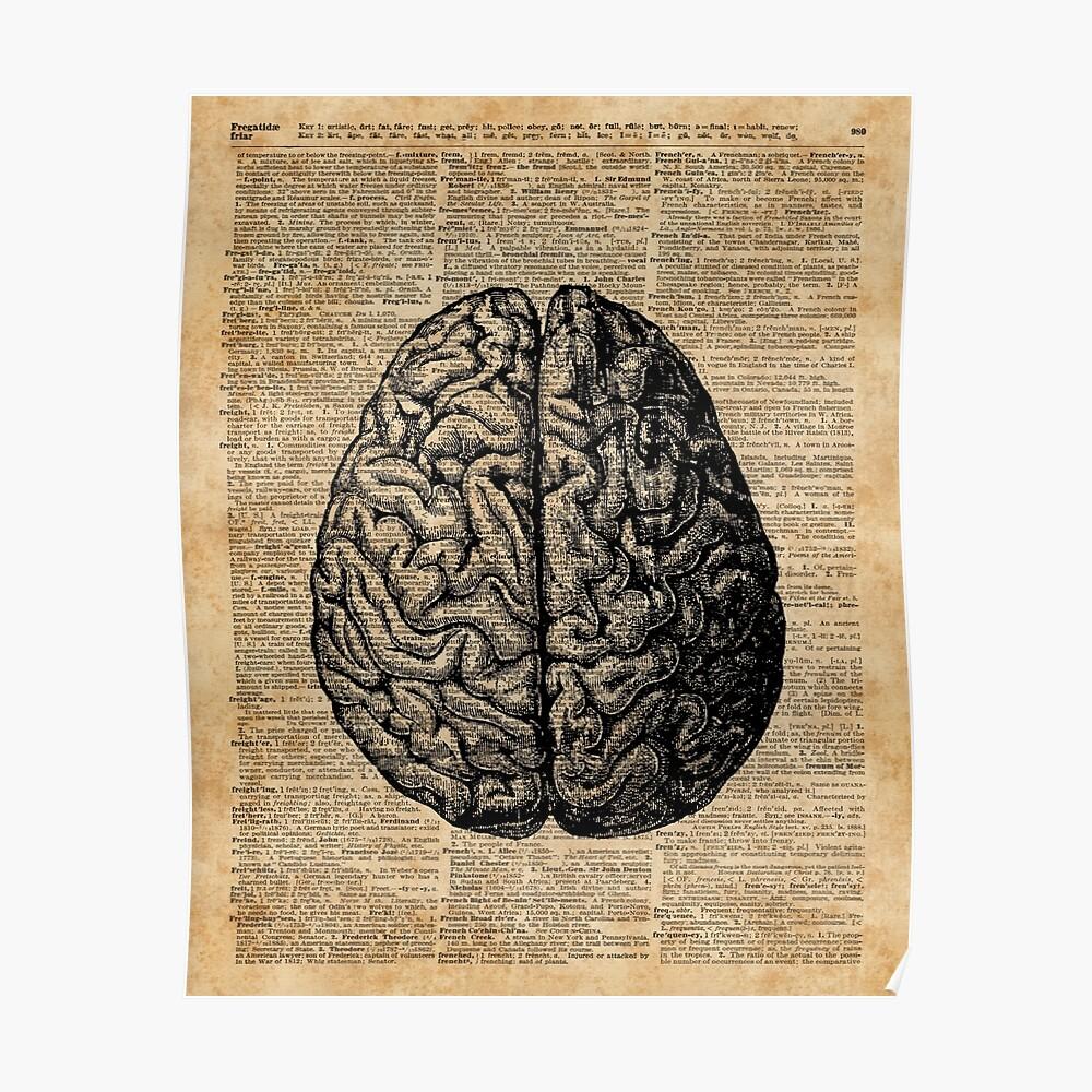 Weinlese-menschliche Anatomie-Gehirn-Illustrations-Wörterbuch-Buch-Seiten-Kunst Poster