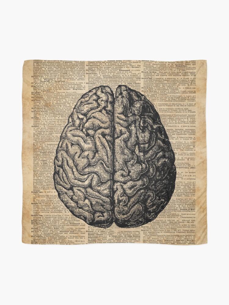 Alternative Ansicht von Weinlese-menschliche Anatomie-Gehirn-Illustrations-Wörterbuch-Buch-Seiten-Kunst Tuch