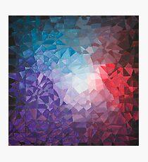 Winter Berry Fragments - acrylic smash Photographic Print